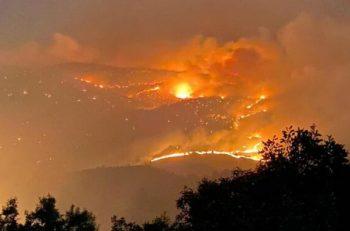 'Yangın Bölgesi Yanmasına Alıştı(rıldı)ğımız Bölge'