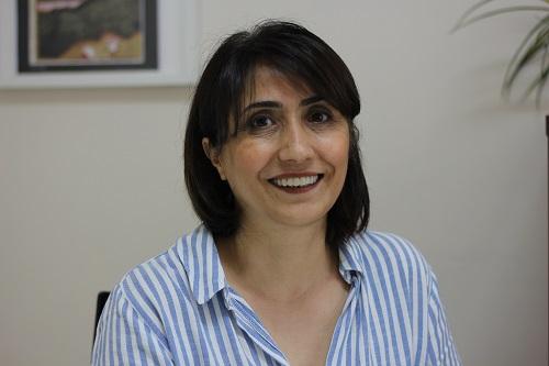 'Kürtçe Sanatın İcrası Mevzuat ve Kültür Politikası Değişiklikleriyle Mümkün'