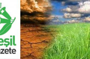 Türkiye'de İklim Medyası (1) <br>'Tüm Konulara Yeşil Bir Mercekten Bakan Yayın: Yeşil Gazete'